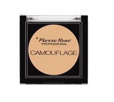 Pierre Rene Professional Camouflage wodoodporny korektor kamuflaż No 00 4,5g