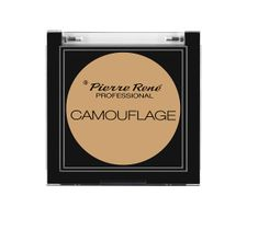 Pierre Rene Professional Camouflage wodoodporny korektor kamuflaż No 02 4,5g
