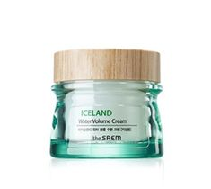 The SAEM Iceland Water Volume Cream Krem nawilżający do twarzy - cera tłusta 80 ml