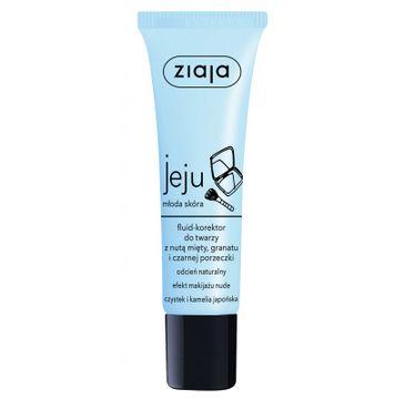 Ziaja Jeju – fluid-korektor do twarzy Naturalny (30 ml)