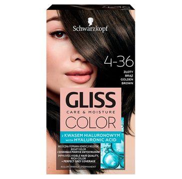 Gliss  – Color (krem koloryzujący nr 4-36 Złoty Brąz 1 op.)