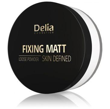 Delia puder matujący Fixing Matt Skin Defined (sypki utrwalający 20 g)