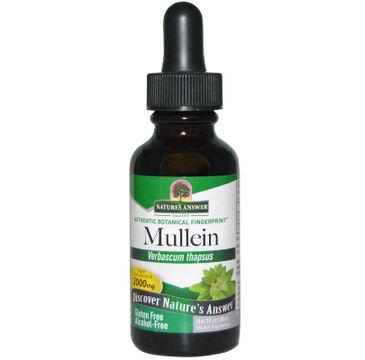 Nature's Answer Mullein ekstrakt z dziewanny drobnokwiatowej suplement diety 30ml