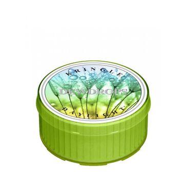 Kringle Candle Daylight – świeczka zapachowa Dewdrops (35 g)