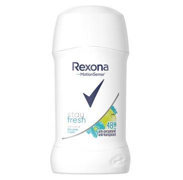 Rexona Stay Fresh Blue Poppy & Apple Anti-Perspirant 48h – antyperspirant sztyft (40 ml)
