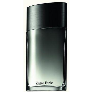 Ermenegildo Zegna Zegna Forte woda toaletowa spray 100ml