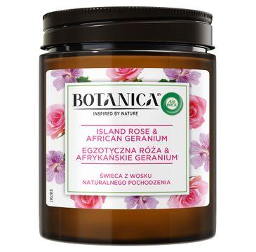 Air Wick Botanica świeca z wosku naturalnego pochodzenia Egzotyczna Róża & Afrykańskie Geranium (205 g)