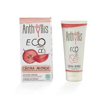 Anthyllis Crema Antiage przeciwzmarszczkowy krem do twarzy z fitokompleksem otrąb przenicy i wyciągiem z winogron 50ml