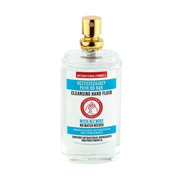 Płyn antybakteryjny do rąk w spray'u – bez użycia wody (30 ml)