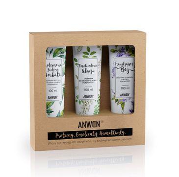 Anwen – Odżywki do włosów o niskiej porowatości zestaw Proteinowa Zielona Herbata 100ml + Emolientowa Akcja 100ml + Nawilżający Bez 100 ml (1 szt.)