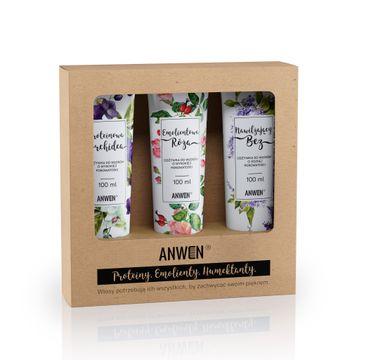 Anwen – zestaw odżywek do włosów o wysokiej porowatości (3 x 100 ml)