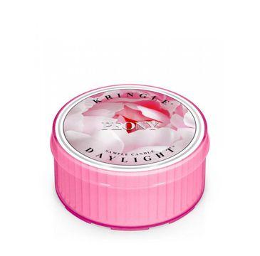 Kringle Candle Daylight – świeczka zapachowa Peony (35 g)
