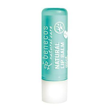 Benecos Natural Lip Balm naturalny balsam do ust Mięta (4.8 g)