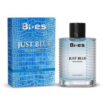 Bi-es Just Blue woda toaletowa dla mężczyzn 100 ml