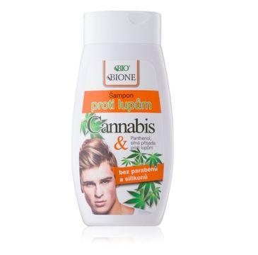 Bione Cosmetics Bio Cannabis szampon przeciwłupieżowy dla mężczyzn 260ml
