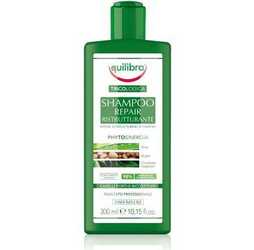 Equlibra – Tricologica szampon naprawczy (300 ml)