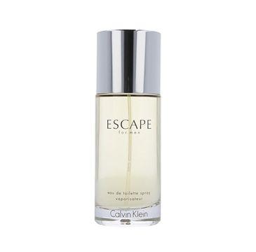 Calvin Klein Escape for Men woda toaletowa spray 100ml