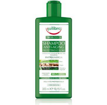 Equlibra – Tricologica  szampon chroniący kolor (300 ml)
