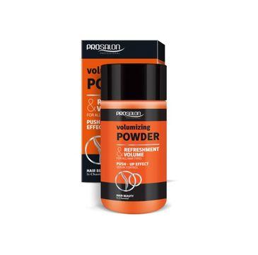 Chantal – Prosalon Volumizing Powder puder zwiększający objętość włosów (20 g)