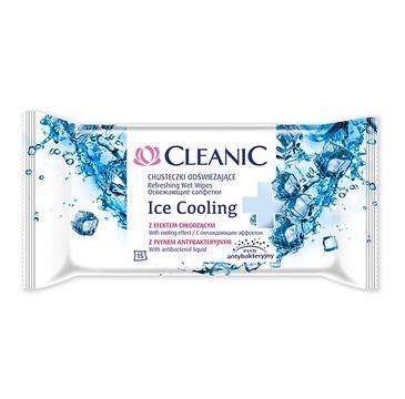 Cleanic Ice Cooling chusteczki odświeżające z efektem chłodzącym 15 szt. 1 op.