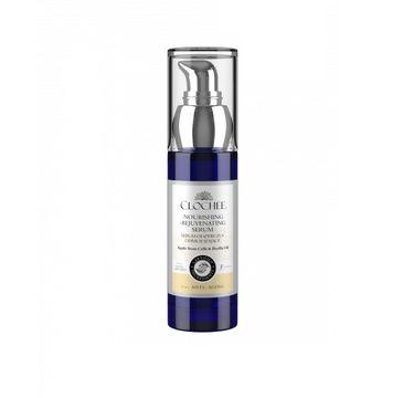 Clochee Nourishing-Rejuventing Serum odżywczo-odmładzające serum Apple Stem Cells & Perilla Oil (30 ml)