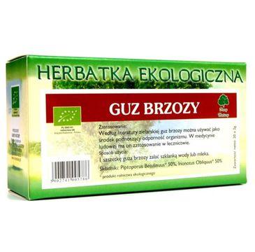 Dary Natury Herbatka Ekologiczna Guz Brzozy 20x2g