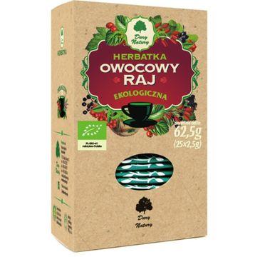 Dary Natury Herbatka Ekologiczna Owocowy Raj 25x2.5g