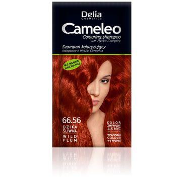 Delia Cosmetics Cameleo szampon do włosów koloryzujący 66.56 dzika śliwka 40 ml