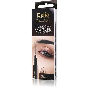 Delia Cosmetics Eyebrow Expert – piórkowy marker do brwi - czarny (1 szt.)