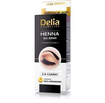 Delia Cosmetics Henna do brwi kremowa nr 1.0 Czarna 2 ml