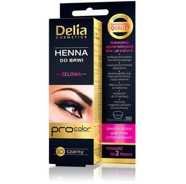 Delia Cosmetics Henna do brwi żelowa 1.0 czarna (2 ml)