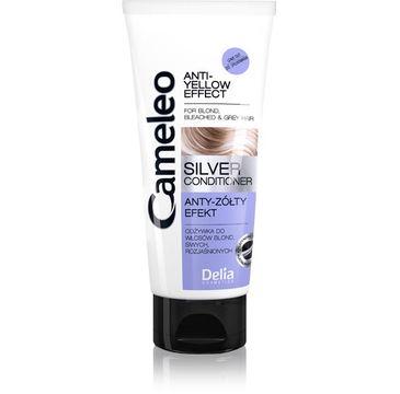 Delia Cosmetics odżywka do włosów blond i siwych 200 ml