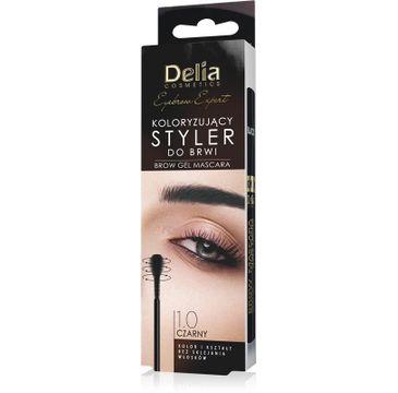 Delia Cosmetics Eyebrow Expert Koloryzujący Styler do brwi 1.0 czarny (11 ml)