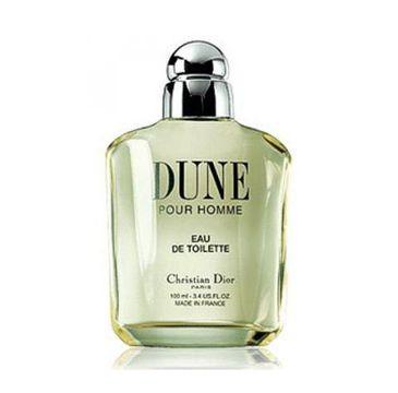 Dior – Dune Pour Homme woda toaletowa spray (100 ml)