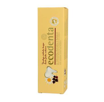 Ecodenta pasta do zębów dla dzieci czarna porzeczka 75 ml