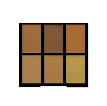 Freedom Pro Conceal Palette Medium/Dark Paleta korektorów Medium/Dark do twarzy 1 szt