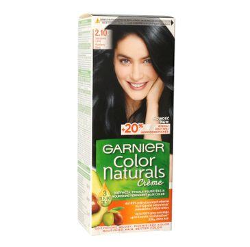 Garnier – Color Naturals Krem koloryzujący nr 2.10 Jagodowa Czerń (1 szt.)