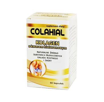 Gorvita Colahian kolagen z kwasem hialuronowym suplement diety 60 kapsułek