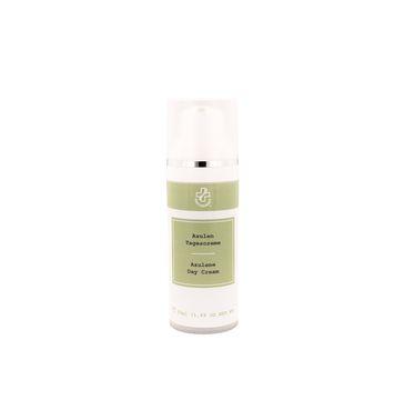 Hagina Azulene Day Cream krem do twarzy na dzień z azulenem (50 ml)