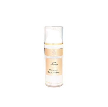 Hagina Q10 Intensive Day Cream krem do twarzy na dzień z koenzymem Q10 (50 ml)