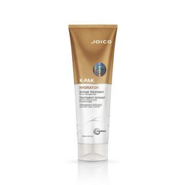 Joico K-PAK Hydrator Intense Treatment intensywna terapia nawilżająca do włosów suchych i zniszczonych (250 ml)