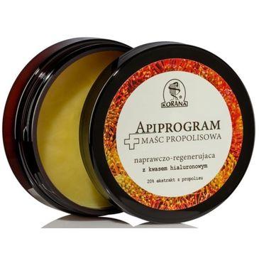 Korana maść propolisowa naprawczo-regenerująca Apiprogram 50 g
