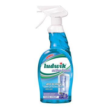 Ludwik Płyn do mycia kabin prysznicowych (750 ml)