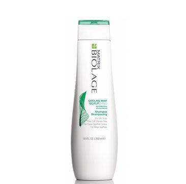 Matrix Biolage Scalpsync Cooling Mint Shampoo odświeżający szampon do włosów 250ml