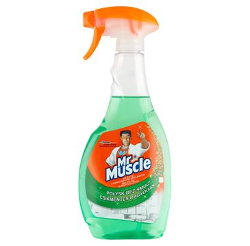 Mr Muscle Płyn do mycia szyb 5w1 Zielony (500 ml)