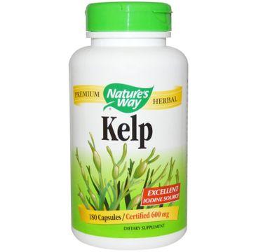 Nature's Way Kelp kelp z jodem z glonów suplement diety 180 kapsułek