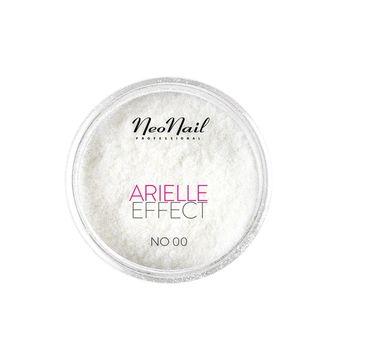 NeoNail Arielle Effect pyłek do paznokci No. 00 Classic (2 g)