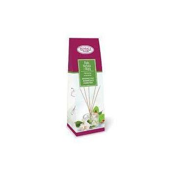 Pachnąca Szafa Odświeżacz Biała Herbata z Miętą (50 ml)
