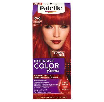 Palette Intensive Color Creme krem do każdego typu włosów koloryzujący nr RV 6 szkarłatna czerwień 50 ml