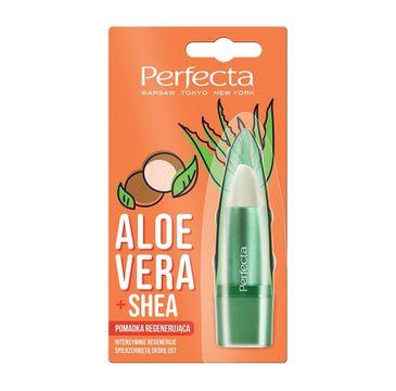 Perfecta Pomadka do ust Aloes i Masło Shea (5 g)
